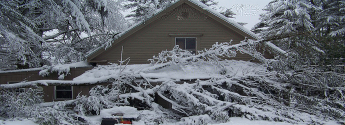Image: damaging ice storms